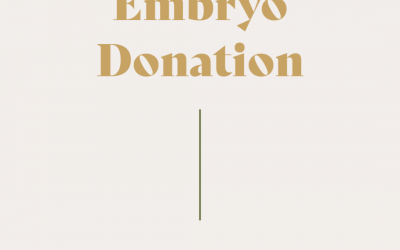 Embryo Donation: You have questions!
