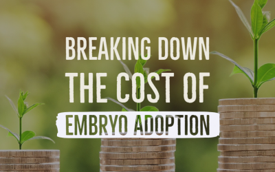 Breaking Down the Cost of Embryo Adoption and Donation
