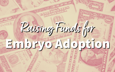 Raising Funds for Embryo Adoption