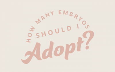 How Many Embryos Should I Adopt?